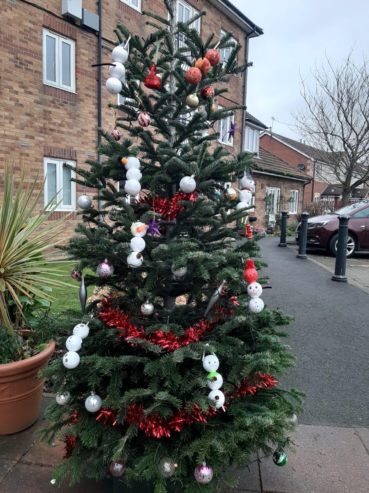 Christmas Tree | PFH